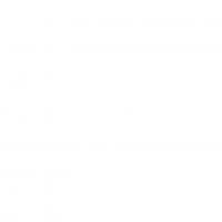 Logo_Dirigentenscgule_2019_weiß